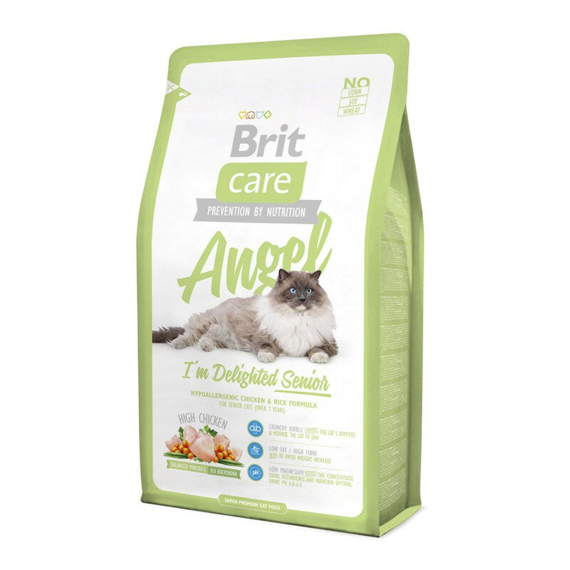 Brit-Care-Cat-Angel-I-am-Delighted-Senior