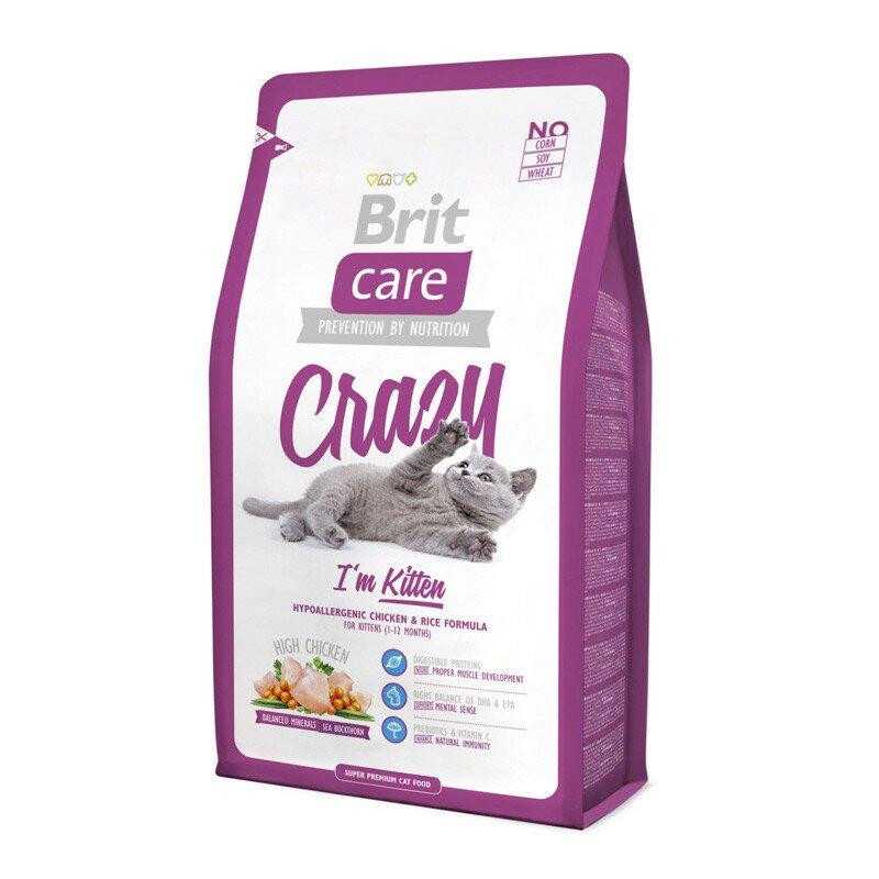 Brit-Care-Cat-Crazy-I-am-Kitten