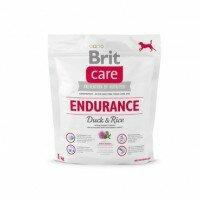 Endurance-small