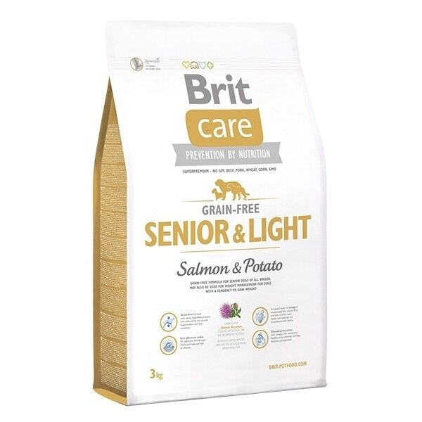 senior-light-salmon